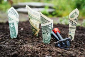 Dollars grow from soil